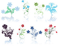 Set Blumen Lizenzfreies Stockfoto