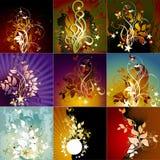 Set Blumenfelder Lizenzfreies Stockfoto