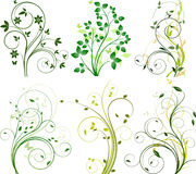 Set Blumenhintergründe Stockbild