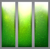 Set of blurry green vibrant banners. Stock Photos