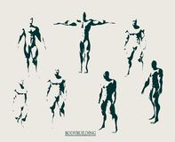 The set of 7 Body building silhouette Stock Image