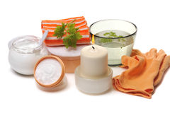 Set for body care Stock Images
