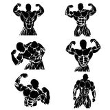 Set of bodybuilders in different poses, vector illustration, icon Stock Photography