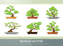 Set of bonsai plant  in the pot flat style Royalty Free Stock Photo