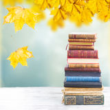Set of books. Tower of books on white wooden desktop, fall garden in background stock photos