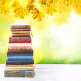 Set of books. Tower of books on white wooden desktop with fall tree leaves in background royalty free stock image