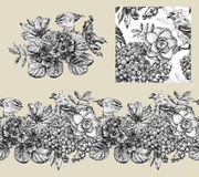 Set of border, pattern, and illustration with different flowers Stock Image