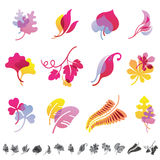 Set of 12 botanical icons. Stock Photos