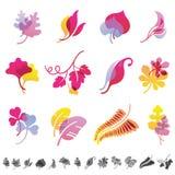 Set of 12 botanical icons. Stock Photos