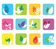 Set of 12 botanical icons. Royalty Free Stock Photography