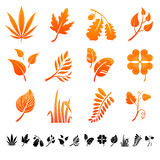 Set of 12 botanical icons. Stock Images