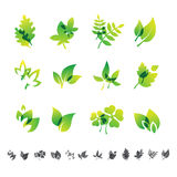 Set of 12 botanical icons. Royalty Free Stock Photo
