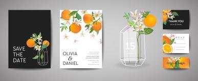 Set Botaniczna ślubna zaproszenie karta, rocznik Oprócz daty, szablonu projekt Pomarańczowa owoc, kwiaty i liście, okwitnięcie royalty ilustracja
