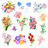 Set a bouquet of flowers Stock Photos