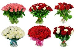 Set of bouquet of multi-colored roses isolated on white backgrou. Nd Royalty Free Stock Photography