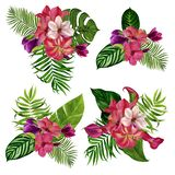 Set of bouquets of flowers. Watercolor illustration. Separate elements on a white background royalty free stock photography