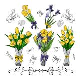 Set of bouquets with yellow tulips and viollet iris. Hand drawn colored sketch with tulip and iris flowers and leaves. stock illustration