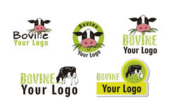 Set bovine logos Stock Photos