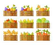 Set of Boxes With Fruits and Vegetables in Vector. Royalty Free Stock Images