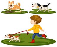 Set of boy and dogs. Illustration royalty free illustration
