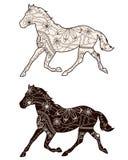 Set brązów konie Fotografia Royalty Free