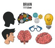 Set of brain icons. Set of human brains icons vector illustration graphic design stock illustration