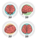 Set of brain power emblems. Set of brain power round emblems vector illustration graphic design stock illustration