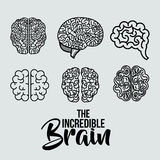 Set brains human isolated icon Stock Images