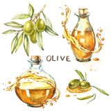 Set A branch of ripe green olives is juicy poured with oil. Drops and splashes of olive oil. Watercolor and botanical. Illustration isolated on white background royalty free illustration