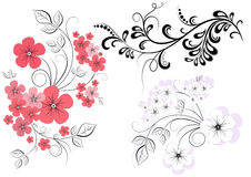 Set branches with flowers Royalty Free Stock Photos
