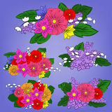 Set of bright bouquets Royalty Free Stock Images