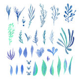 Set of bright colorful blue-green leaves Royalty Free Stock Images