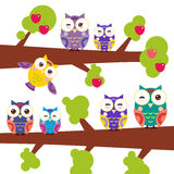 Set bright colorful owls on the branch of apple-tree with red apples on white background. Vector Stock Image
