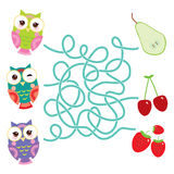 Set bright colorful owls with pear cherry strawberry on white background. labyrinth game for Preschool Children. Vector Stock Photography