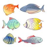 Set of  bright fish Royalty Free Stock Images
