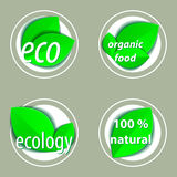Set of bright green labels with leaves for organic, natural, eco Stock Images