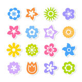 Set of brightly colored flowers  on white background Stock Photo