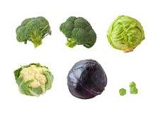Set Broccoli isolated Royalty Free Stock Photo