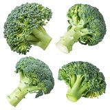 Set of broccoli isolated on white background. With clipping path Stock Image