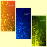 Set of Brochure Flyer design vector template Geometric Lines and Lights abstract backgrounds Royalty Free Stock Photography