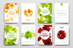 Set of brochure, poster design templates in autumn Royalty Free Stock Photography