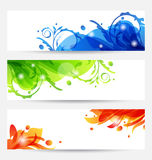 Set brochure templates with flower frames Royalty Free Stock Photo