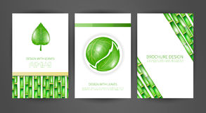 Set of brochures with leaves. Vector design templates. Design with fresh bamboo vector illustration