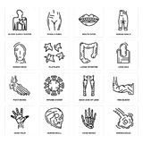 Set of Bronchioles, Hand Bones, Palm, Back Side Of Legs, Foot Large Intestine, Human Head, Mouth Open, Blood Supply System icons. Set Of 16 simple  icons such as Royalty Free Stock Photography