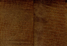 Set of brown crocodile leather texture Stock Photography