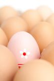 Set of brown eggs with one pink in flower egg Stock Images
