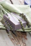 set brunnsort för lavendel Royaltyfri Fotografi