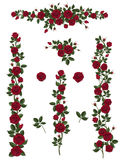 Set Brushes Flowers Climbing Roses Stock Images