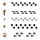 Set of  brushes in the form of animal tracks Royalty Free Stock Images