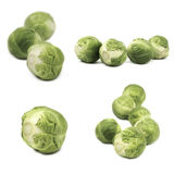 Set of brussels sprouts isolated on white background Stock Photo